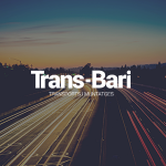 desarrollo web wordpress trans bari