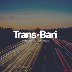 desarrollo web wordpress trans bari